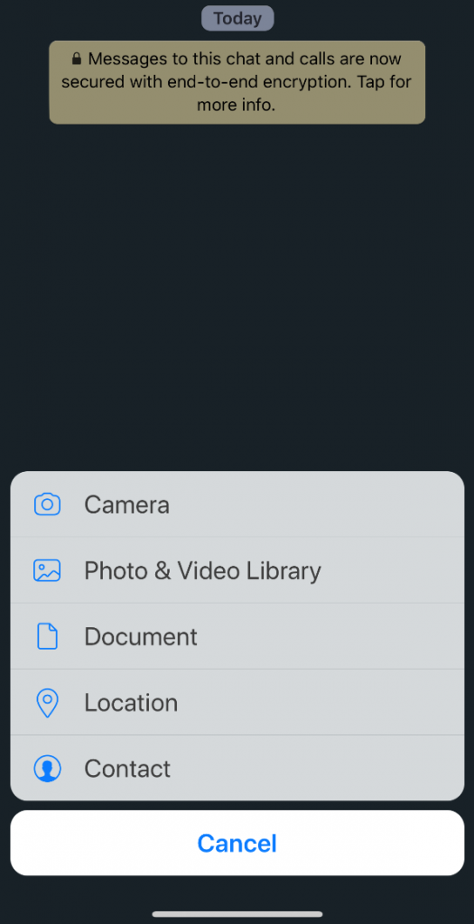 Send File as document iphone