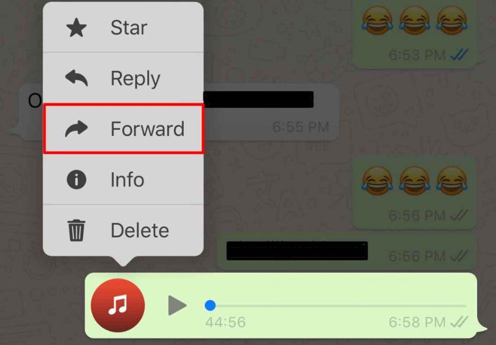 Forward Mp3 Whatsapp