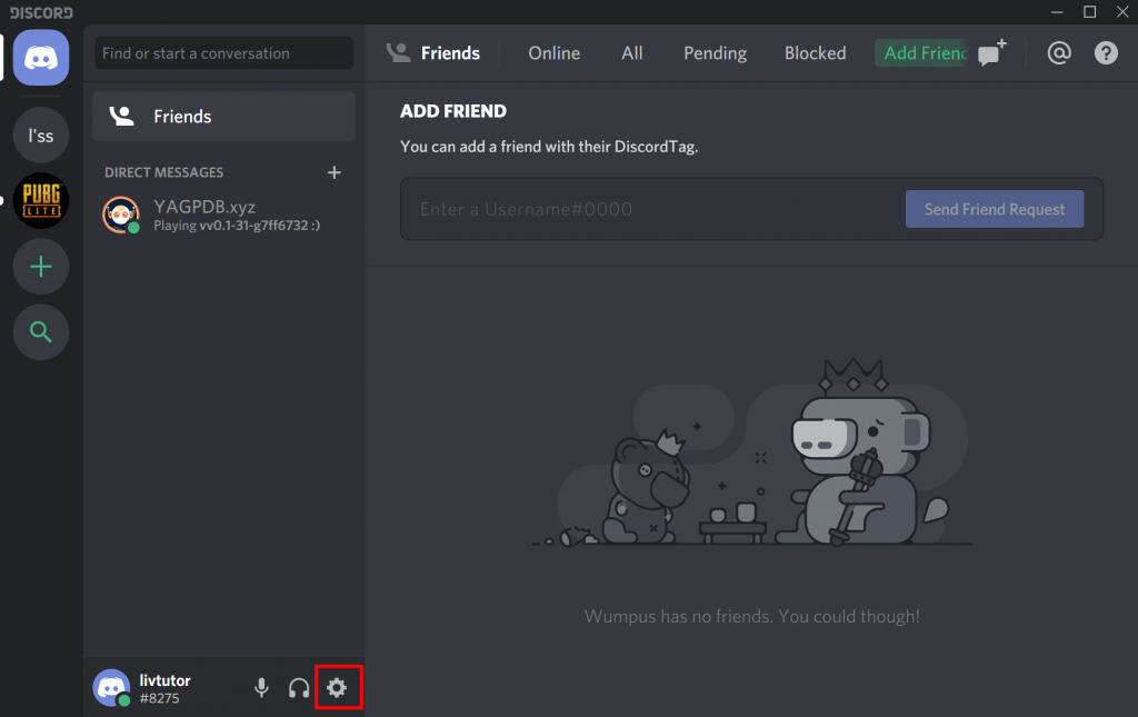 Discord Settings