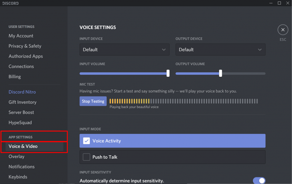 Discord Voice Video Settings
